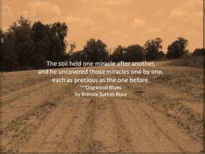 Quote soil held one miracle after another